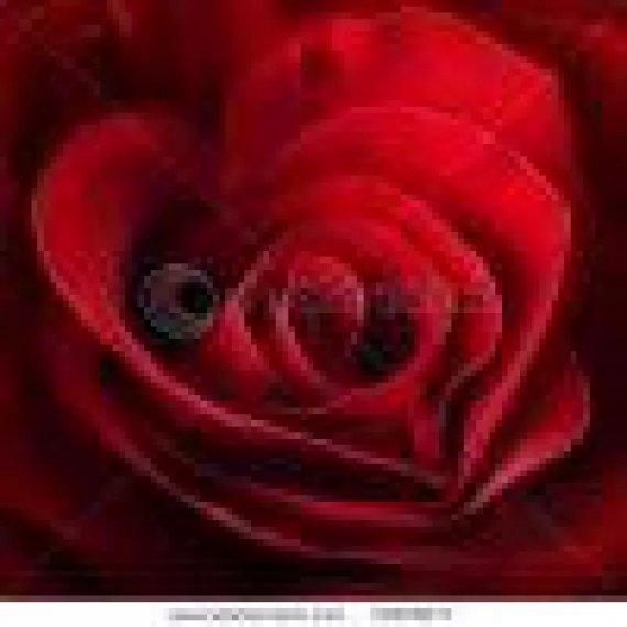 Σωμα Υπερυθρης Θερμανσης Redwell Wellina WE 600 με εκτυπωση (κοκκινο τριανταφυλλο)